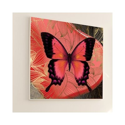 JORDAN CARLYLE Metamorphosis Butterfly #2 Wall Art