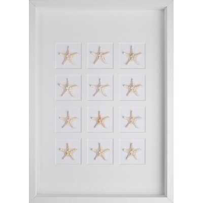 Mirror Image Home Starfish Art