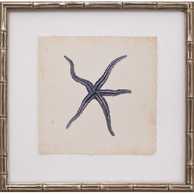 Mirror Image Home Mini Indigo Starfish III Art