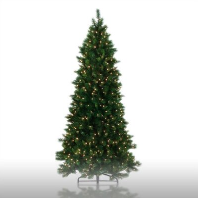 Regency International 5' Prelit Shaped Charleston Pine Artificial Christmas Tree with Clear Lights