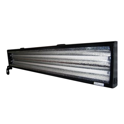 HomeSelects International eLight 2 Light High Output Grow Light Fixture