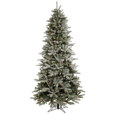 "Vickerman Co. Frosted Frasier Fir 8' 6"" Green Artificial Christmas Tree with 550 Multicolored LED Lights with Stand"