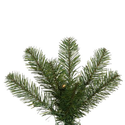 "Vickerman Co. Salem Pencil Pine 6' 6"" Green Artificial Christmas Tree with 250 Clear Lights with Stand"