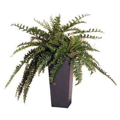 "Vickerman Co. Floral 30"" Artificial Potted Double Boston Fern in Green"