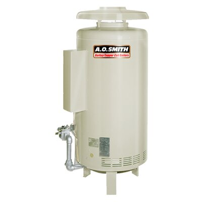 HW-520 Commercial Hot Water Supply Boiler Nat Gas Burkay 520,000 BTU Input