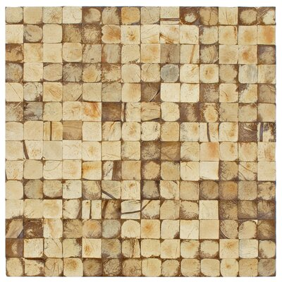 "EliteTile Natural 16-1/2"" x 16-1/2"" Concave Coconut Mosaic Wall Tile"