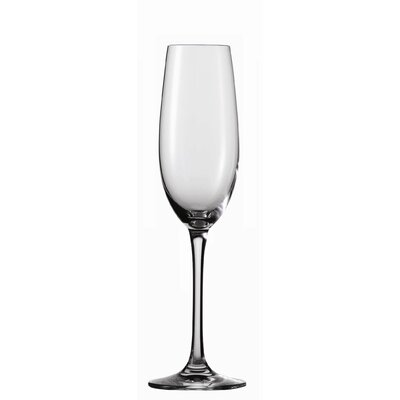 Schott Zwiesel Tritan Classico 6.9 Oz Champagne Glass (Set of 6)