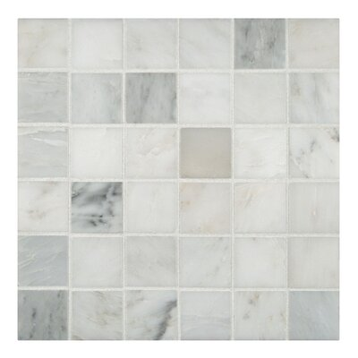 "MS International 2"" x 2"" Honed Marble Mosaic in Arabescato Carrara"