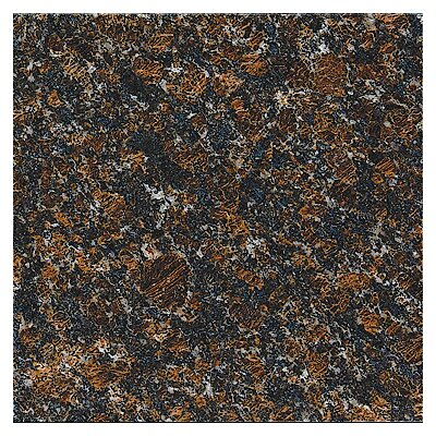 "MS International 18"" x 18"" Polished Granite Tile in Tan Brown"