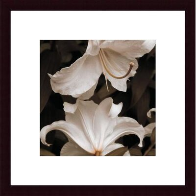 Barewalls White Lilies Wood Framed Art Print