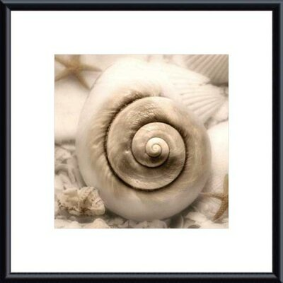 Iridescent Seashell I by Donna Geissler Metal Framed Art Print