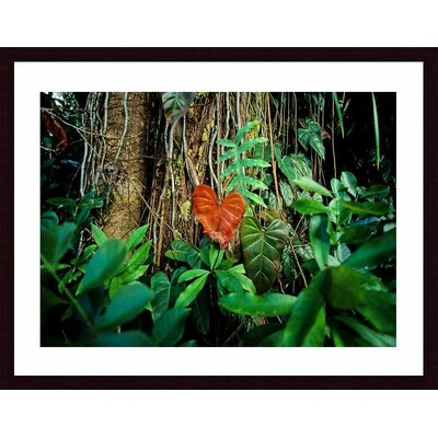 Rain Forest Wood Framed Art Print