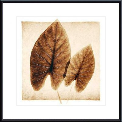 Barewalls Taro Leaves Metal Framed Art Print