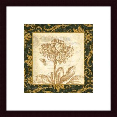 Barewalls Primrose by Paula Scaletta Wood Framed Art Print