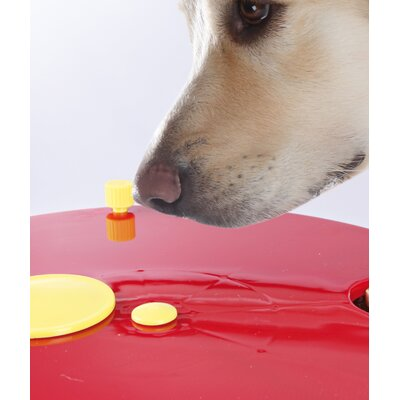 Trixie Pet Products Roulette Wheel Dog Activity Game