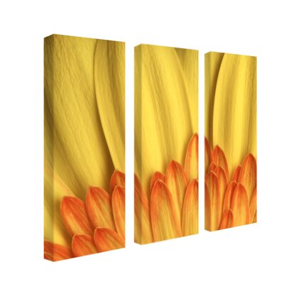 "Trademark Global Flame, by Aiana, Canvas Art - 24"" x 8"" (Set of 3)"