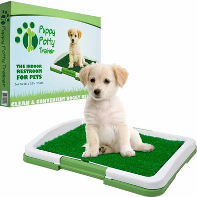 Trademark Global Paw Puppy Potty Trainer - The Indoor Restroom for Pets