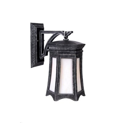 Acclaim Lighting Milano 1 Light Wall Lantern