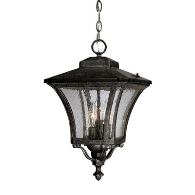 Acclaim Lighting Tuscan 3 Light Outdoor Hanging Lantern