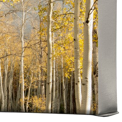 DENY Designs Bird Wanna Whistle Aspen Gallery Wrapped Canvas