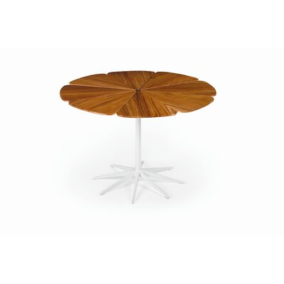 Richard Schultz Petal Dining Table with Top