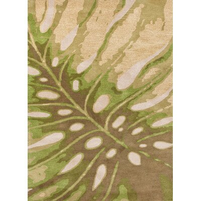 Coastal Living(R) Hand-Tufted Green Coastal Rug
