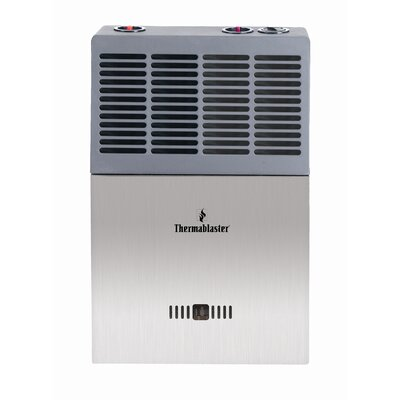 Thermablaster 10,000 BTU Vent Free Gas Blue Flame Wall Natural Gas and Propane Space Heater