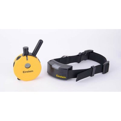 E-Collar Technologies Educator Remote with Night Tracking Light Dog Collar