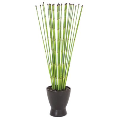 Distinctive Designs Silk Snake Grass in Matte Zen Pot
