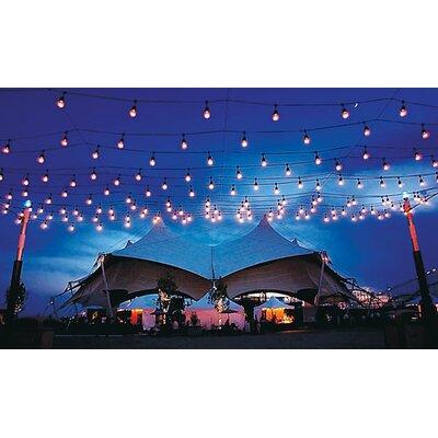 American Lighting LLC Medium Base Suspended String Light Reviews Wayfair
