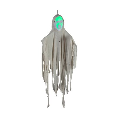 Gemmy Industries Hanging Face Out Ghost with Face