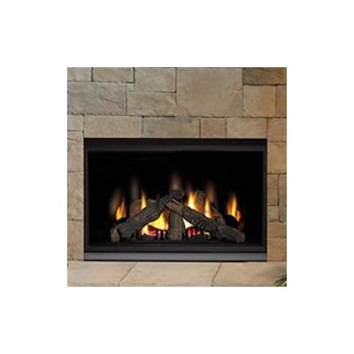 Direct Clean Direct Vent Gas Fireplace