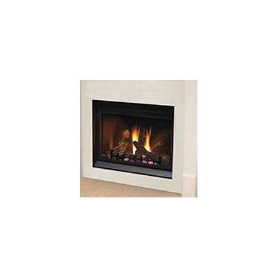 Napoleon Direct Clean Face Direct Vent Gas Fireplace