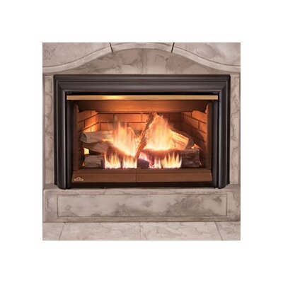 Direct Inspiration Direct Vent Gas Fireplace