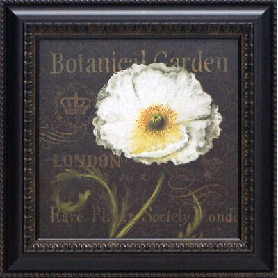Botanical Garden II Framed Art