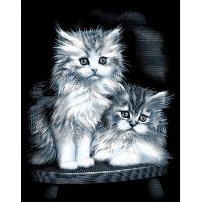 Reeves Fluffy Kittens Scraperfoil