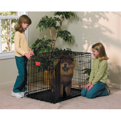 Midwest Homes For Pets Life Stages Fold & Carry Double-Door Dog Crate