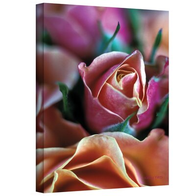 Art Wall Kathy Yates ''Mauve and Peach Roses'' Canvas Art