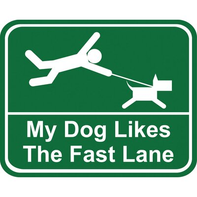 Little Gifts My Dog Likes the Fast Lane Car Magnet