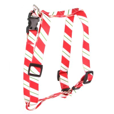 Yellow Dog Design Peppermint Stick Roman Harness