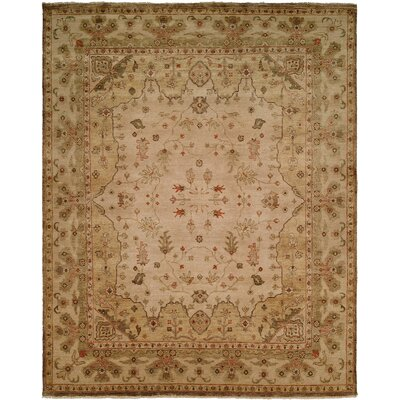 Wildon Home ® Earth Tones Rug