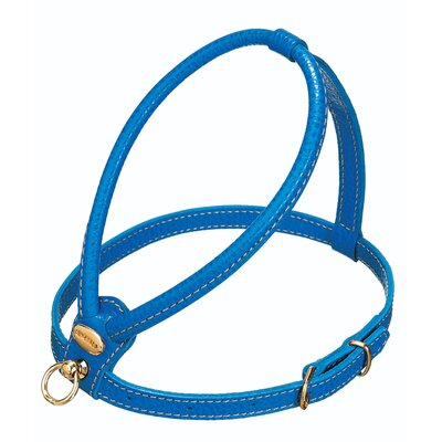 PetEgo Fashion Leather Dog Harness in Blue