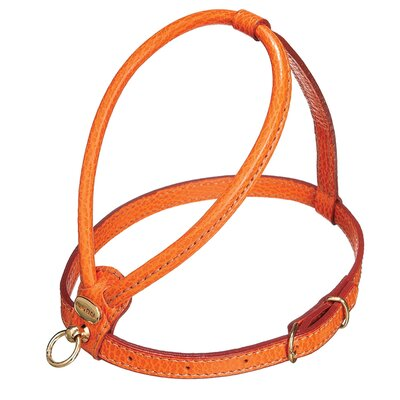 PetEgo Fashion Leather Dog Harness in Orange
