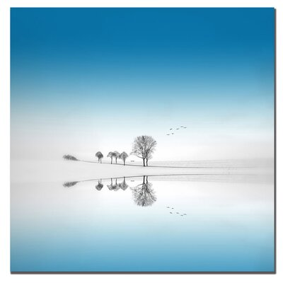 "Trademark Fine Art Blue Season by Philippe Sainte-Laudy, Canvas Art - 24"" X 24"""