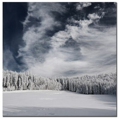 Trademark Art Snowy Sky by Philippe Sainte-Laudy, Canvas Art - 24