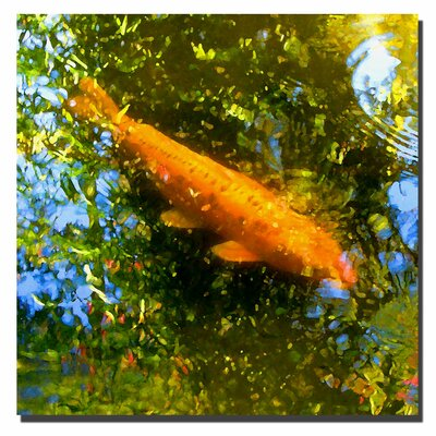 "Trademark Fine Art Koi Fish I by Amy Vangsgard, Canvas Art - 24"" x 24"""