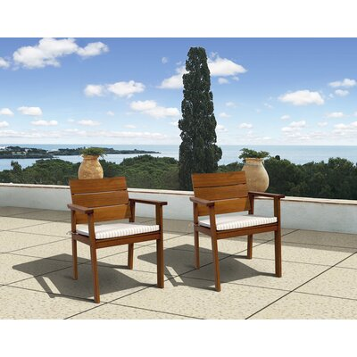 International Home Miami Amazonia Vincent Chair with Cushion (Set of 2)