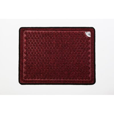 Dr. Doormat Antimicrobial Treated Doormat
