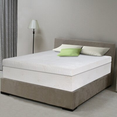 "OrthoTherapy 13"" Memory Foam Mattress"