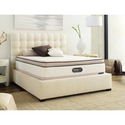 Simmons TruEnergy Amanda Evenloft Plush Memory Foam Top Mattress